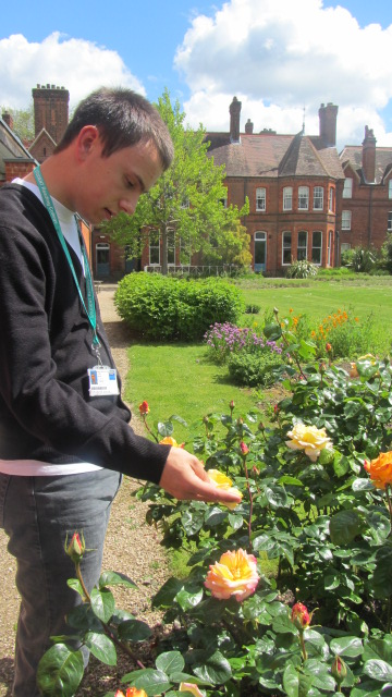 Luke examines the flowers outside of MERL