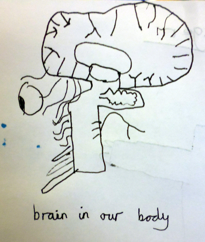 ArtsAward Brain Drawing